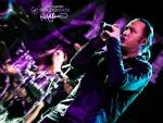 Концертные фотографии 976